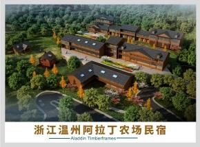 浙江木屋-温州阿拉丁民宿木屋项目